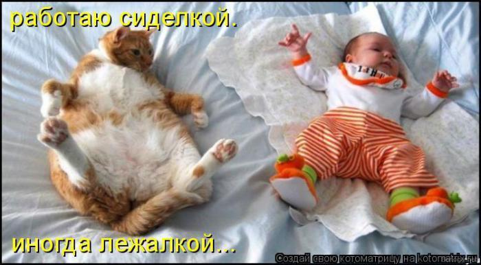 http://www.vancats.ru/images_dr/foto/6718ff31f8ae80c0f92cd60b410e3a32.jpg
